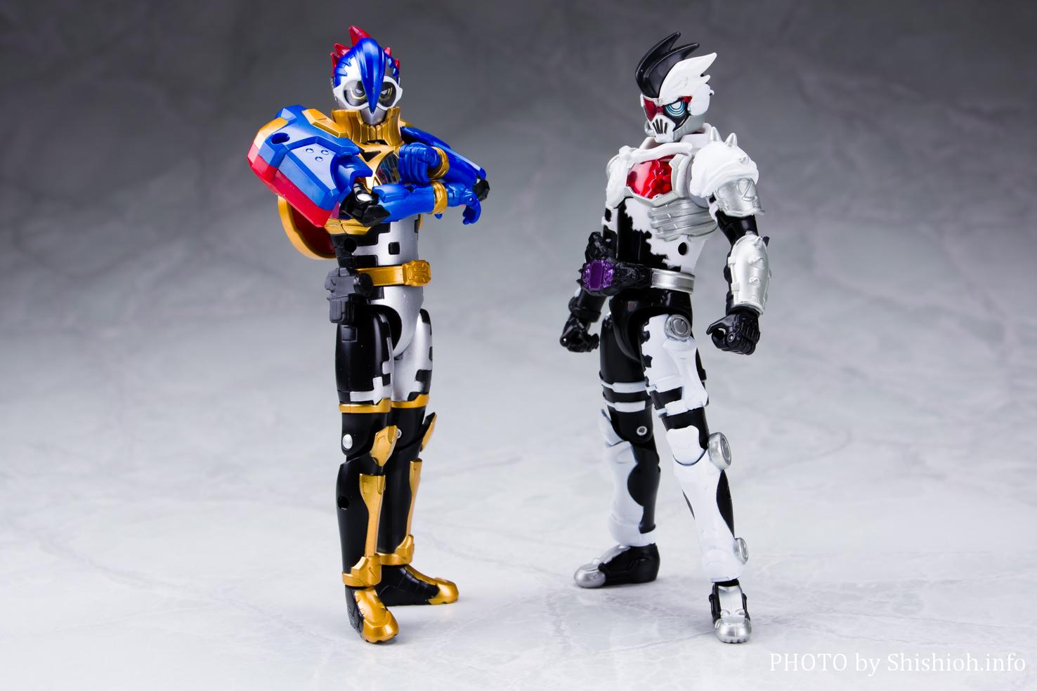 LVUR14 仮面ライダーパラドクス