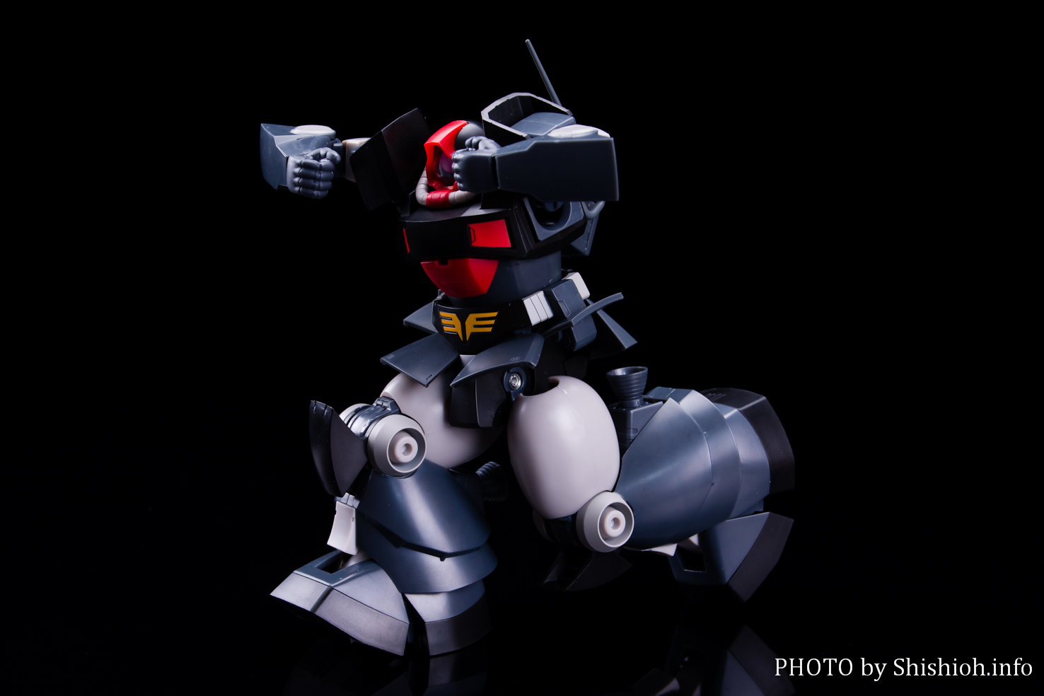 ROBOT魂〈SIDE MS〉YMS-09 プロトタイプ・ドム ver. A.N.I.M.E.