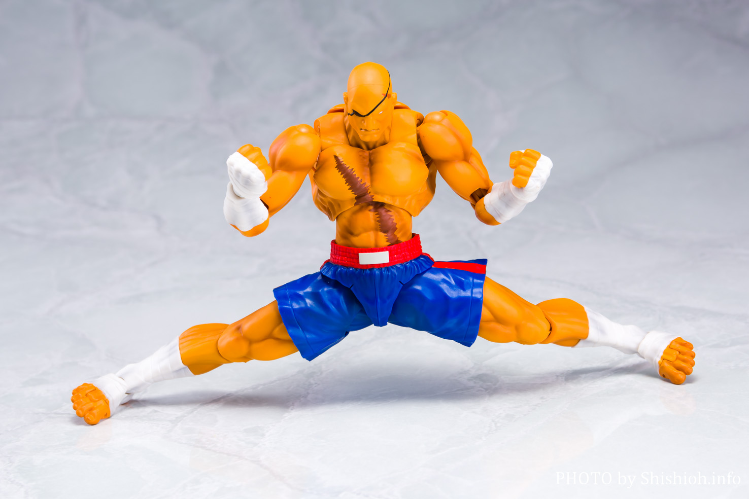 S.H.Figuarts サガット